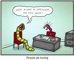 parasite job hunting