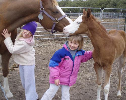 kids-and-horses.jpg