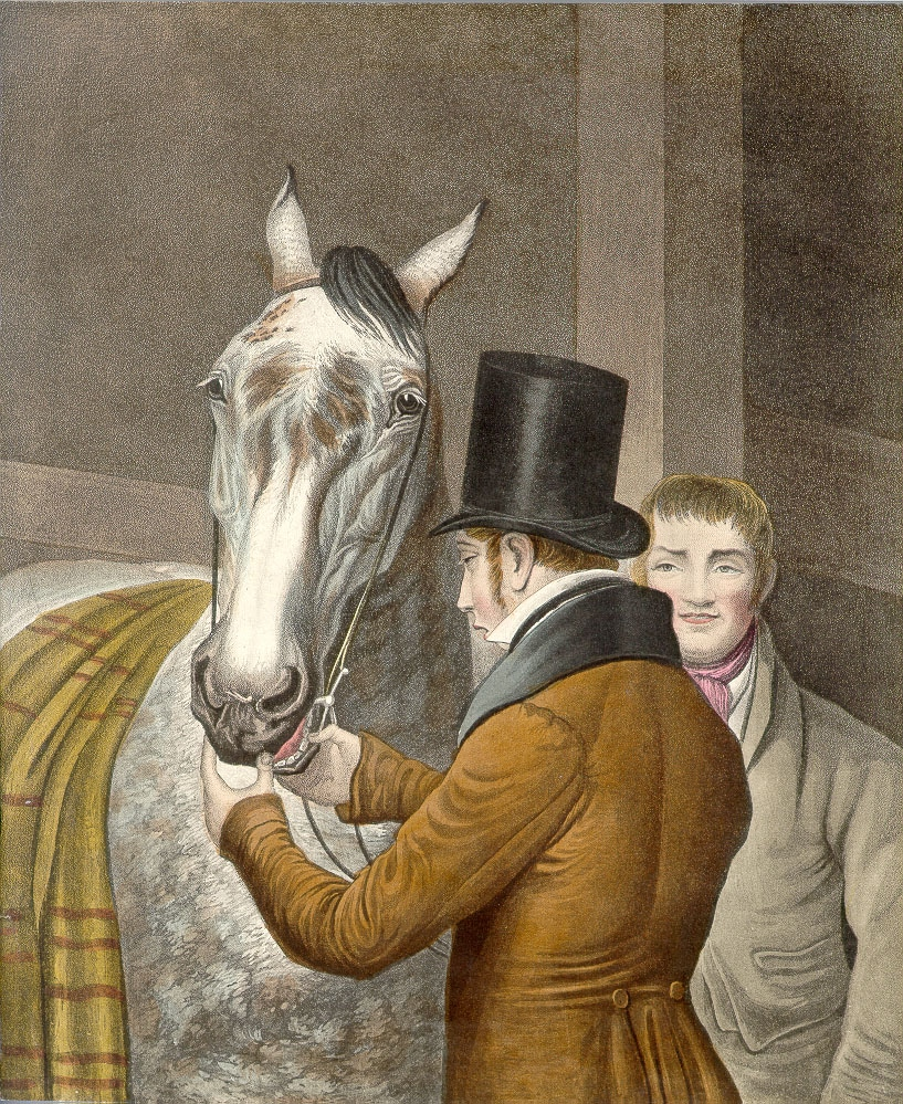 Horse-dentist.vintage.3.jpg