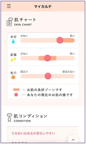 1日目の肌チャート
