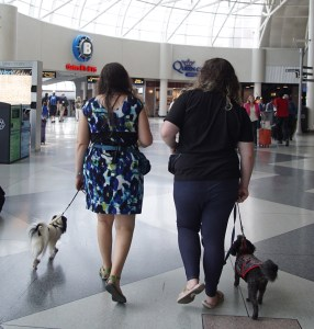Veronica with Hestia and Scarlet with Gigi walking through the food court at the airport