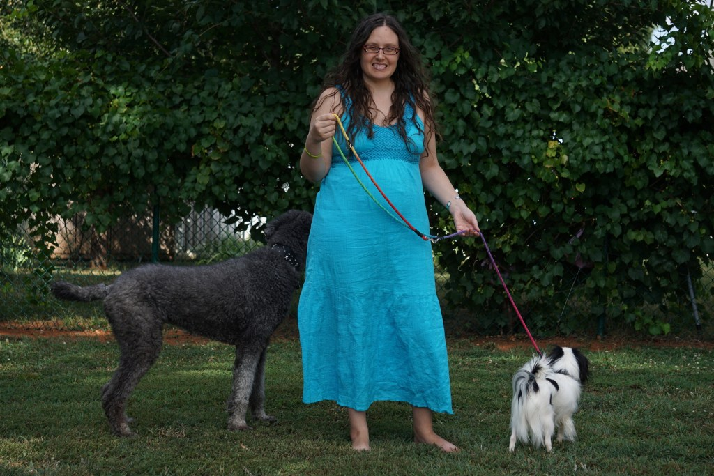 Veronica in a turquoise dress holding Hestia on a rainbow leash on her right and Ollie investigating on the left