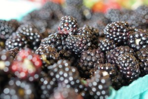 Blackberries from further away.  They look like normal blackberries :)