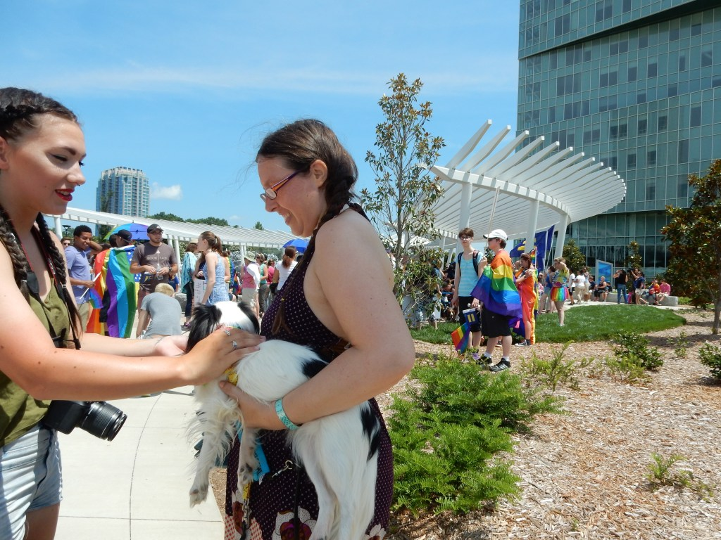 At the Equality March, Veronica in a brown dress holding Hestia, a small black and white dog. A person is petting Hestia and is literally an inch from my boob.