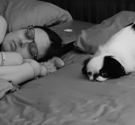 A black and white photo of Veronica taking a nap on the bed with Hestia taking up Brad's position on his pillow.