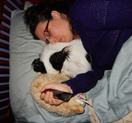 Veronica wearing a purple sweater asleep in bed. Hestia, a small black and white dog, shares the pillow. Bun-Lamb (stuffie) is on the end of the pillow supporting my hand which is holding my cell phone. This is how I fall asleep many days!
