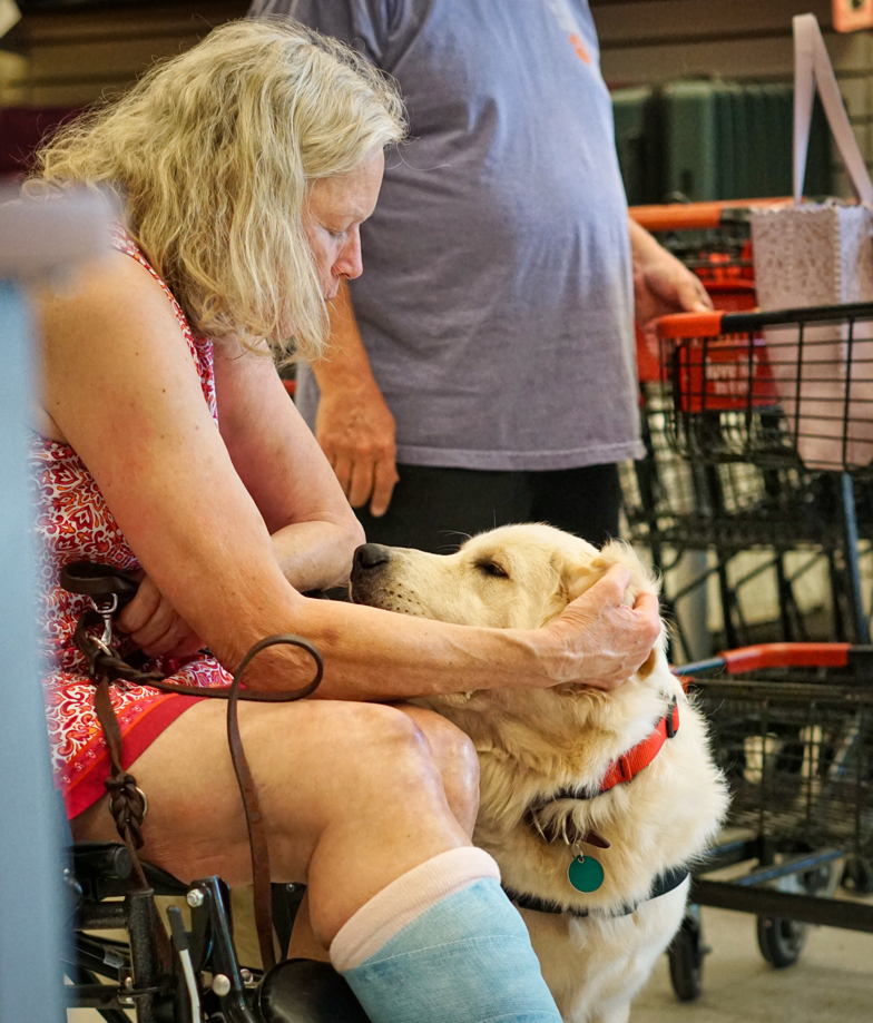 This picture shows the bond between Barbara and Tripper.  He has his head on her lap, and she is petting his ears and talking to him in this tender moment.