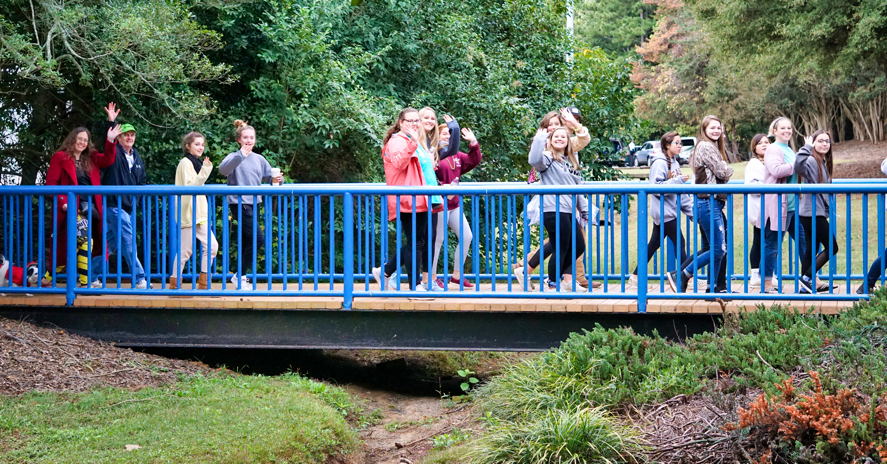 A group of walkers crosses a footbridge.  At the rear of the picture are Veronica with Hestia and Dan.