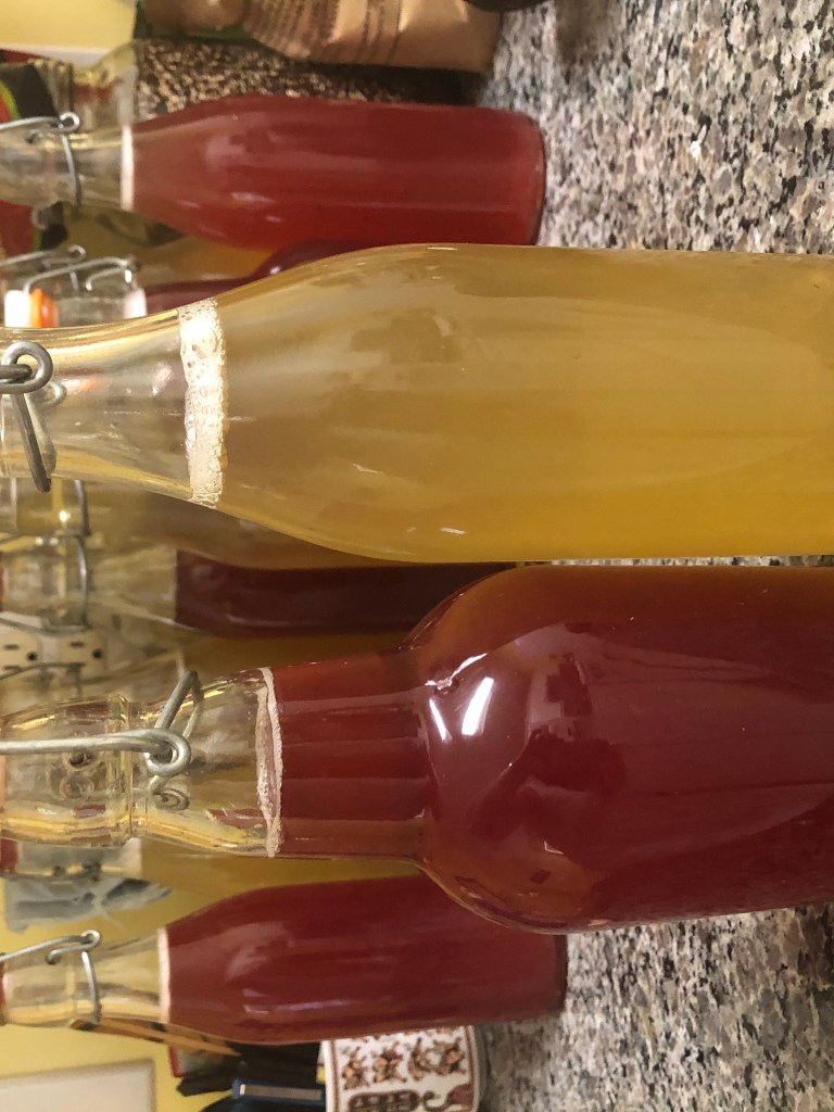 The dark pink kombucha is in a 16 oz bottle on the left.  It is the Hibiscus Rose flavor.  On the right is a dark yellow kombucha in a bottle-- the Ginger Peach flavor.