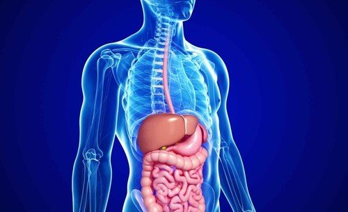 Best-Gastroenterologist-in-Bangalore-Gastroenterology-Doctors-in-Bangalore