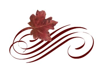 Leaf Flourishes  Documents and Designs