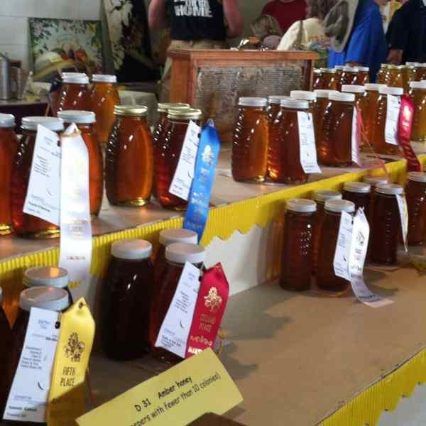 Open Class Honey Judging Results