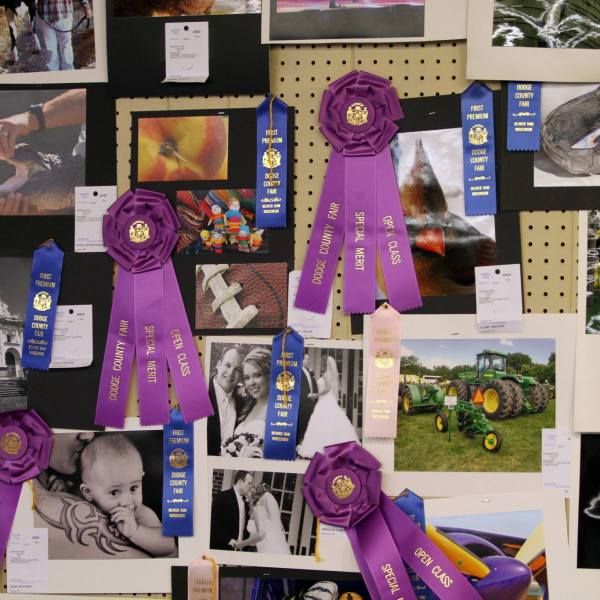 Open Class Photography Judging Results