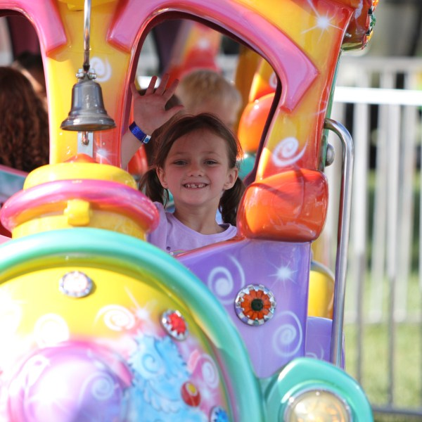 Fair Countdown Gallery: Family Fun in 60 Days