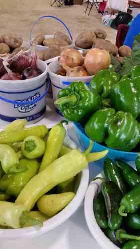 Farmer's Market at the Dodge County Flea Market