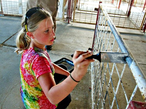 Ava Finger paints the salvaged pig-pen panels