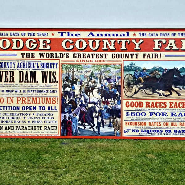 Order your Dodge County Fair Walldog mural t-shirt