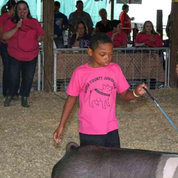 Pig Pals Swine Spectacular