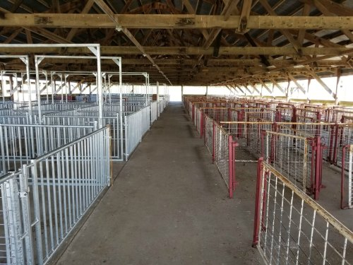 Dodge County Livestock Committee Swine Barn Remodel