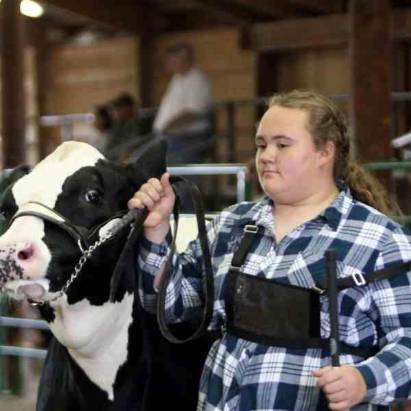 Junior Fair Dairy Show