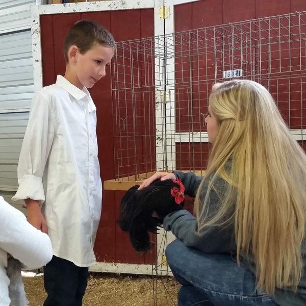 Little Flock Showmanship Contest