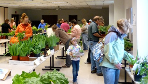 Shoppers at Master Gardener Plant Sale UWEX