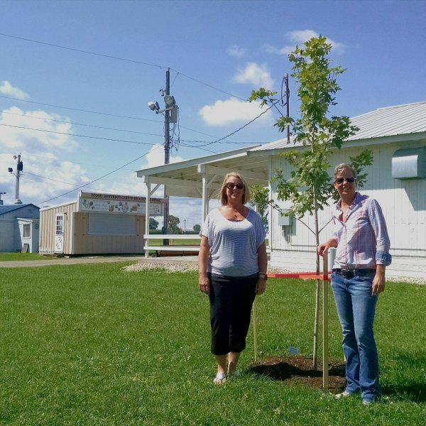 Jones family first to sponsor new shade tree