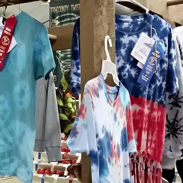 Junior Fair Clothing Exhibit Judging
