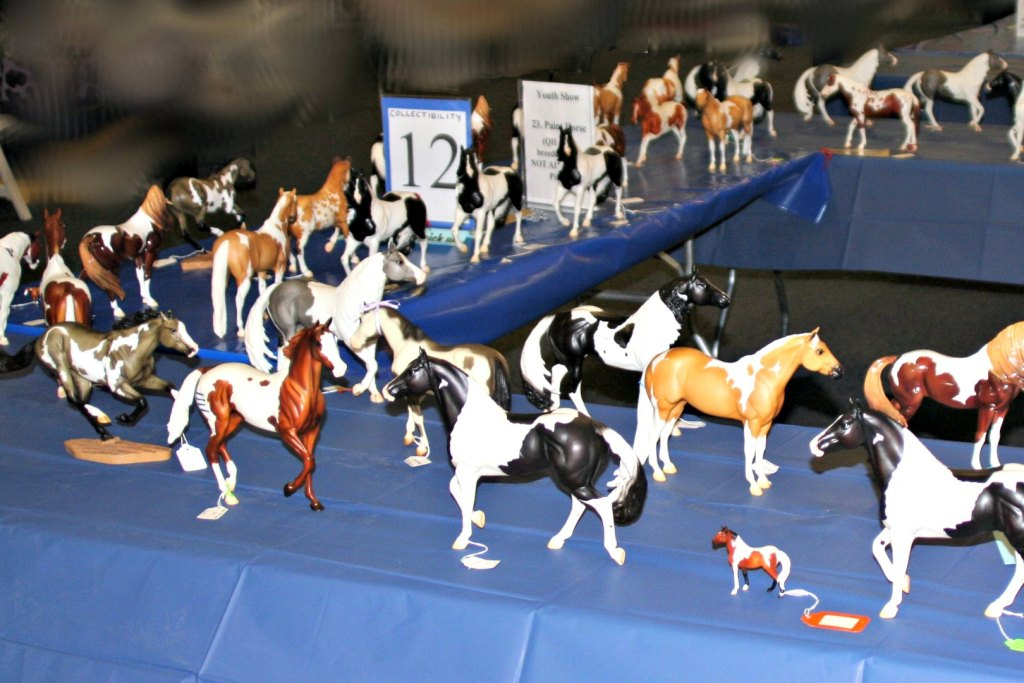 junior fair model horse judging