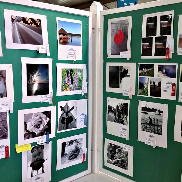 2019 Junior Fair Photography Judging Results