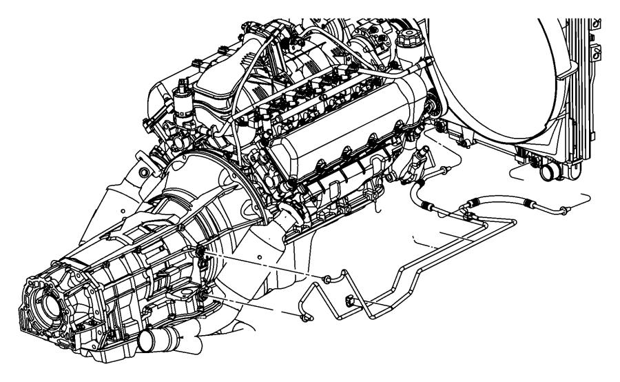 Dodge Dakota Tube. Oil cooler. Lines, transmission