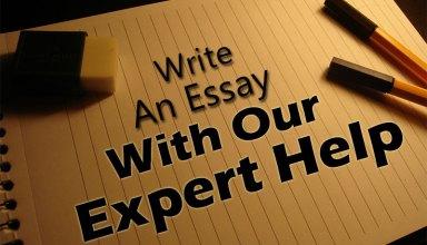 5 Expert Tips to Choosing Best Essay Help