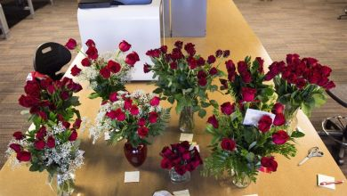 Top 10 Ultimate get well Flowers for Someone Special
