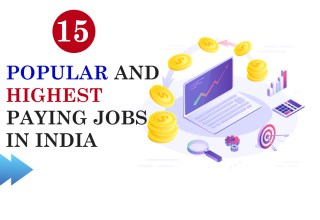 5 Popular and Highest Paying Jobs in India