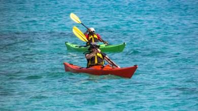 Kayaking Adventures - What You'll Discover On a Shoalhaven Gorge Tour