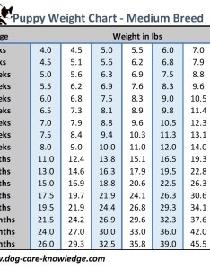 Puppy weight chart for medium size breed dogs also this is how big your dog will be rh care knowledge