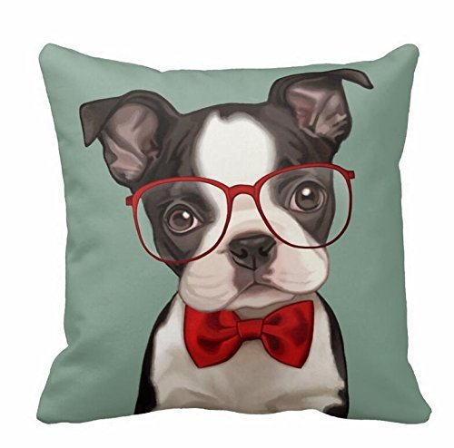 Caring For A Boston Terrier's Health