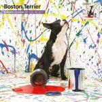 Boston Terrier Stay Classy Journal