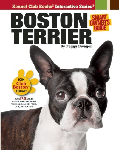Boston Terrier Video: Advice & Tips On Getting A Boston Terrier Dog