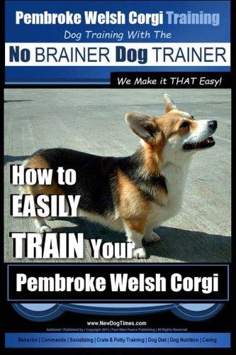 Pembroke Welsh Corgi Video: Pembroke Welsh Corgi Temperament Test
