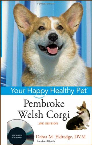 Welsh Corgi Cleans Families Windows