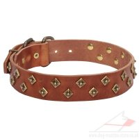 Natural Leather Dog Collar | Designer Dog Collar Studded ...