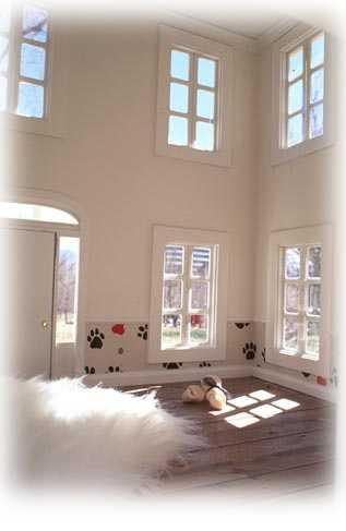 Custom Dog Houses Luxury Dog Houses  The Last Word in Posh Dog Houses