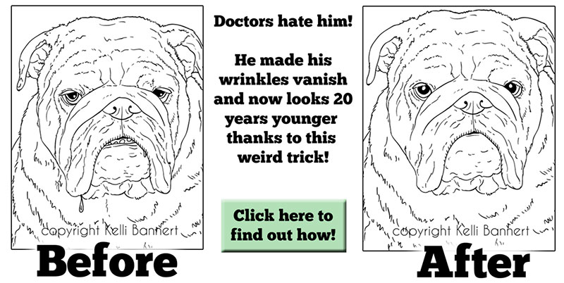 Service Dogs Coloring Book to Paint and Learn