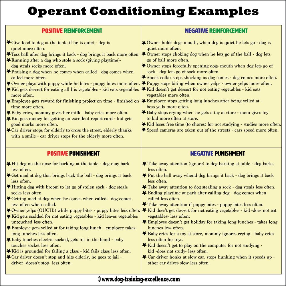 OPERANT CONDITIONING EXAMPLES Alisen Berde
