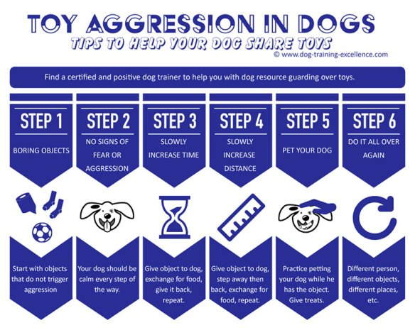 Control Dog Aggression Over Toys