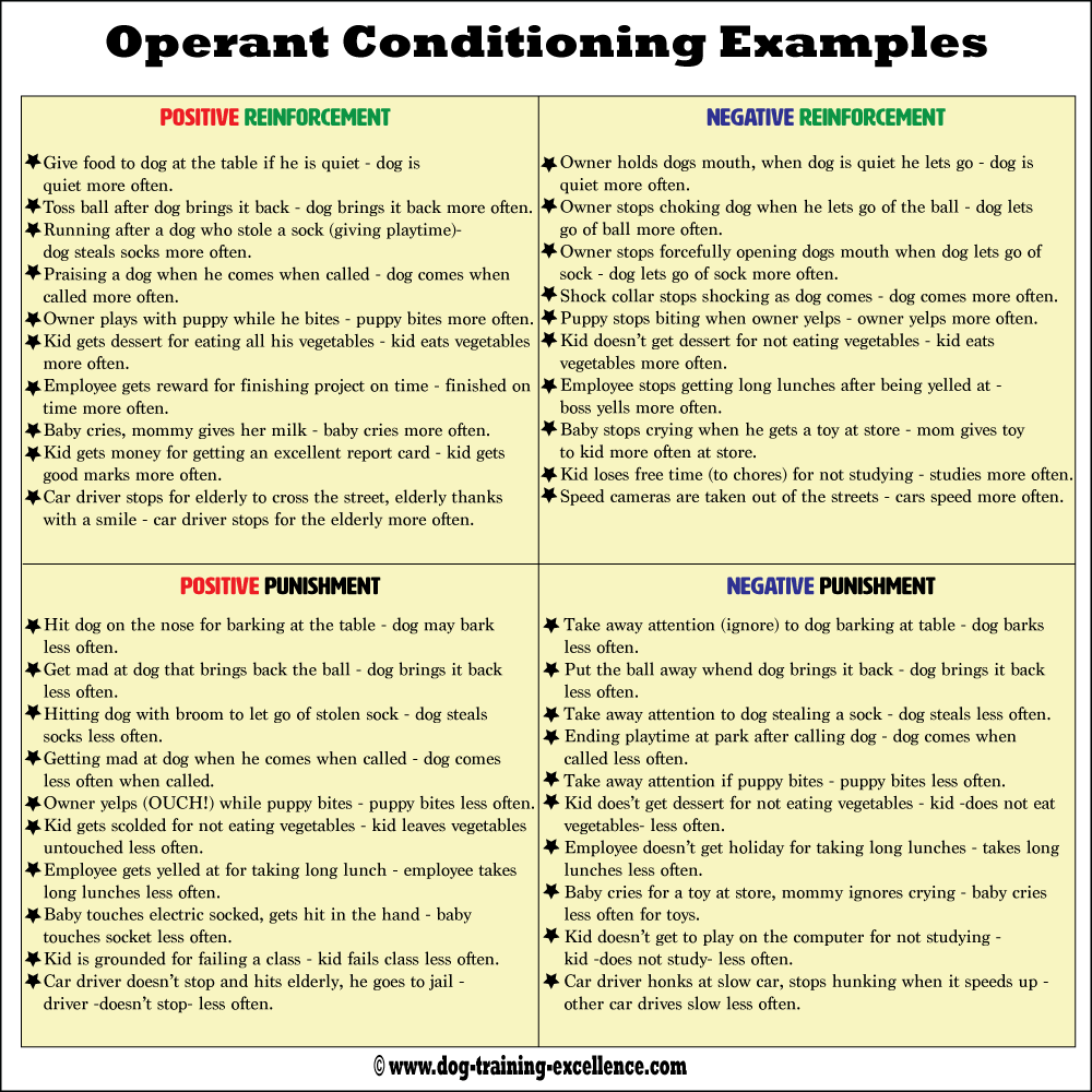 Operant conditioning examples