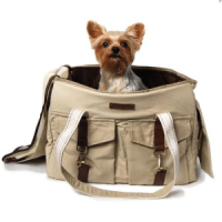 Buckle Tote Dog Carrier