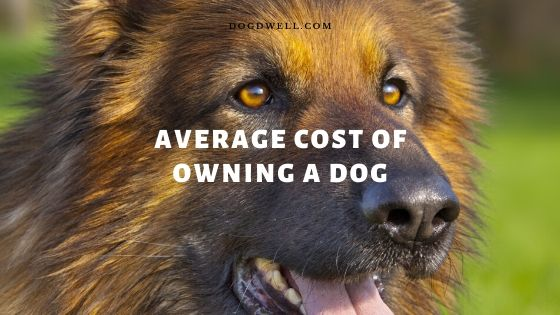 average cost of owning a dog