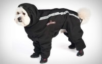 Winter Jackets   Dogfather & Co.   Canine Retail & Dog ...